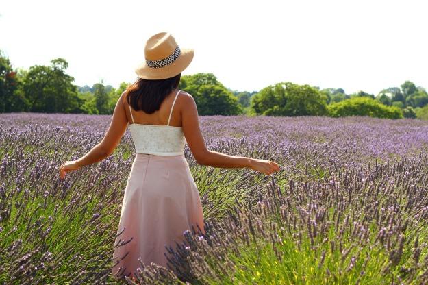Lavender-006