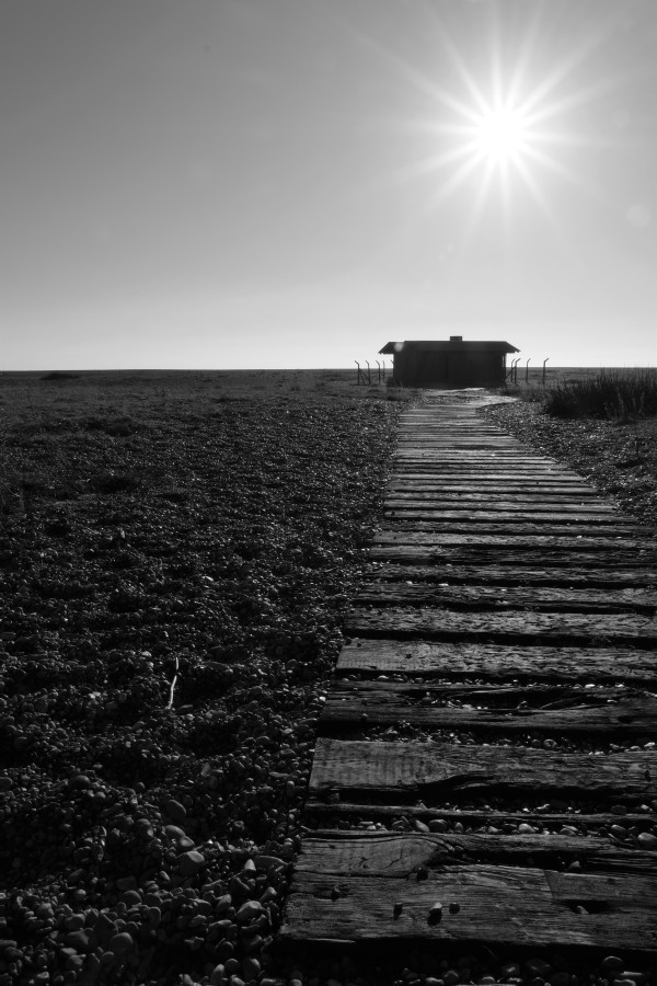 Dungeness0041
