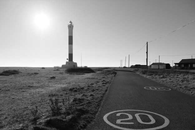 Dungeness0048