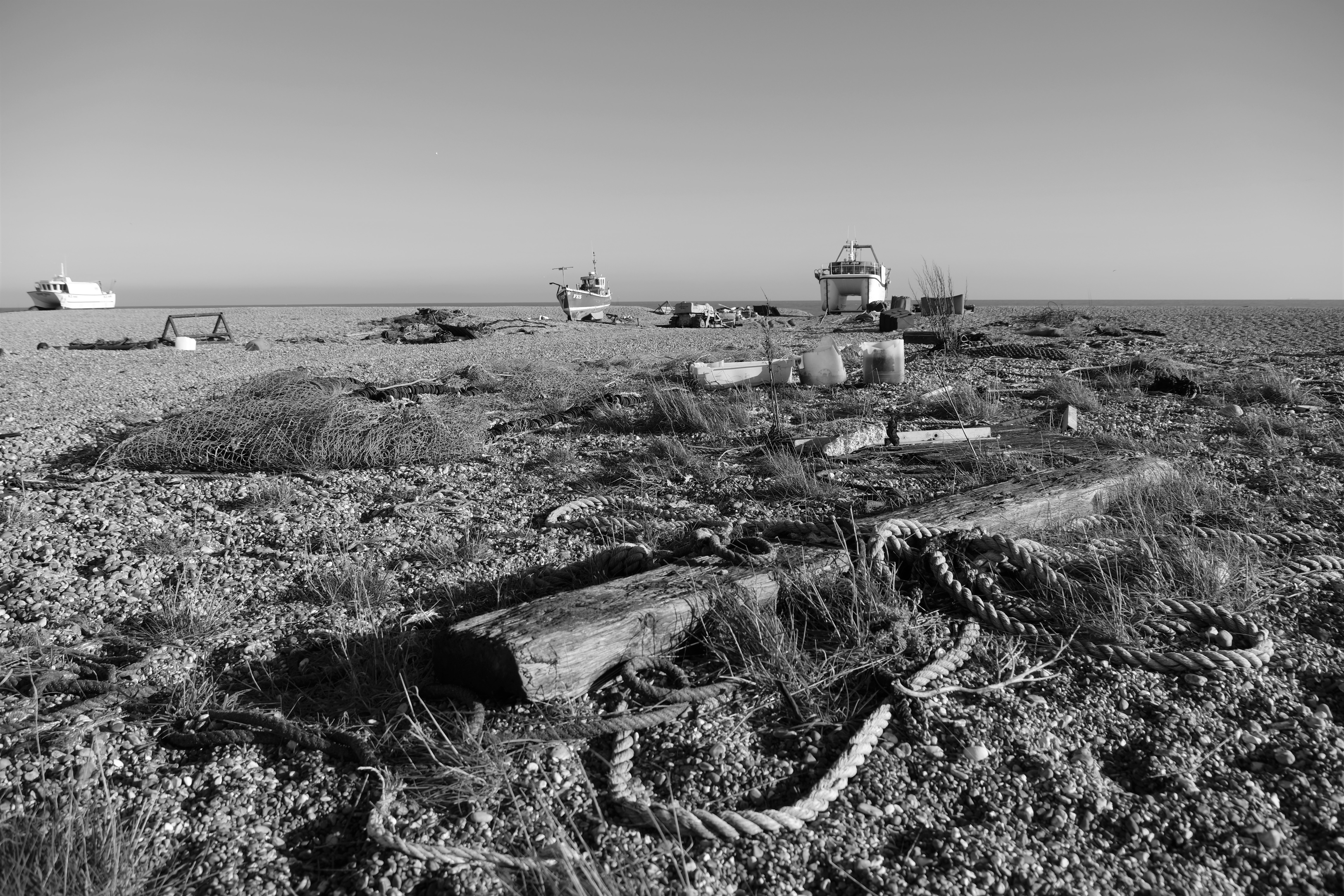 Dungeness0075