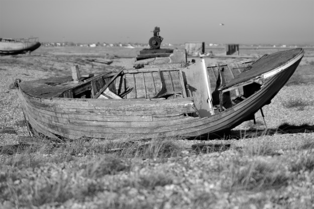Dungeness0101