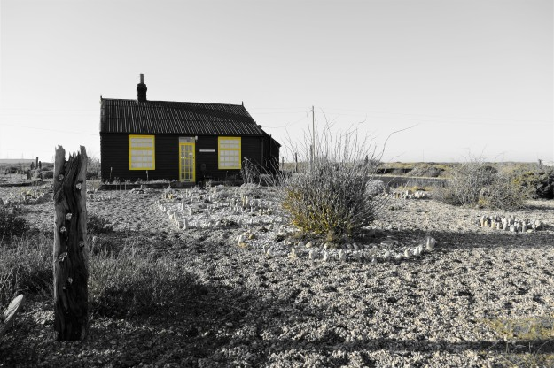 Dungeness0110