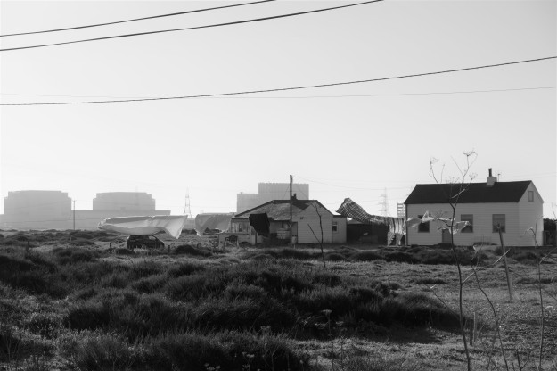 Dungeness0128