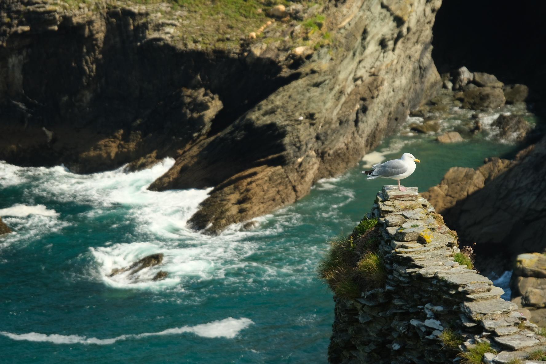 Cornwall-056
